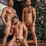 🎄🎄🎄 from Marco Napoli, Sir Peter & Tomas Brand