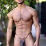 "8"" dick of Apollo Parker"
